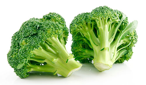 Broccoli Giardinetto