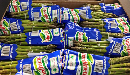 Asparago Verde 1