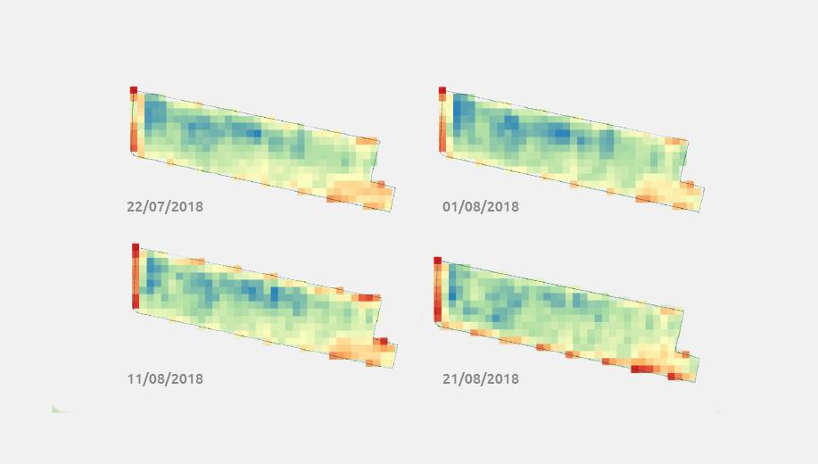 giardinetto-mappe-termiche-terreno